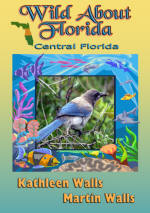 WildAboutFloridaCentral